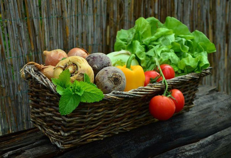 I prodotti del nostro orto potrebbero essere contaminati