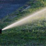 Quanto irrigare il giardino: come calcolare i tempi ottimali per il prato