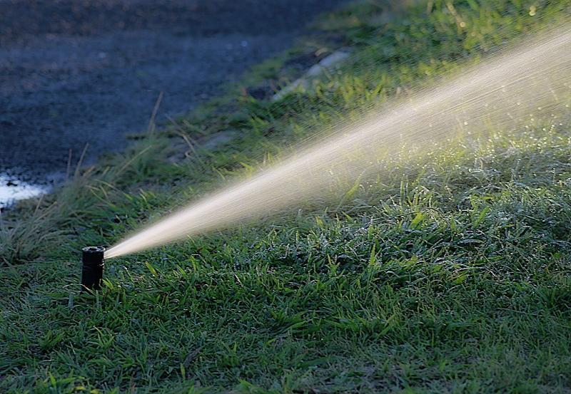 Quanto irrigare il giardino