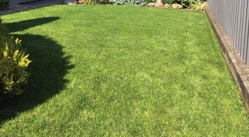 Il giardino a ottobre 2019