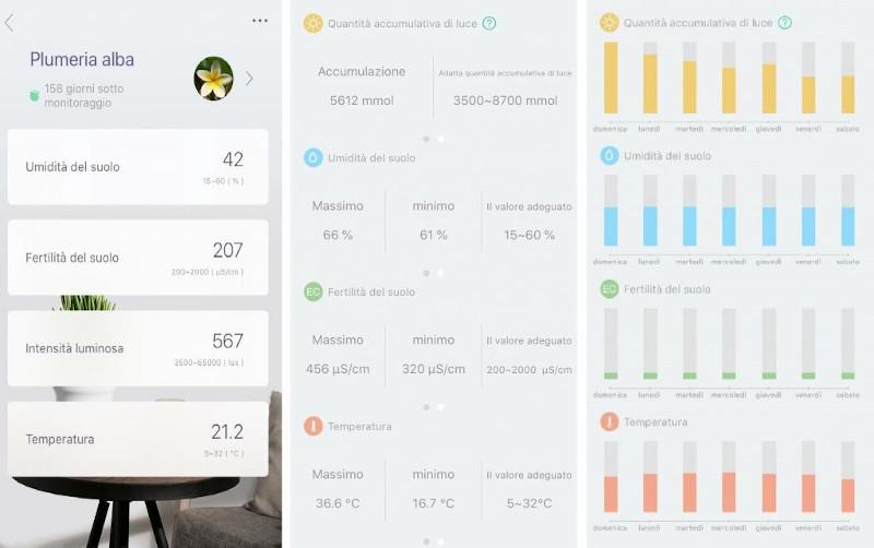 Report giornaliero, settimanale, mensile Xiaomi Mi Flora Smart