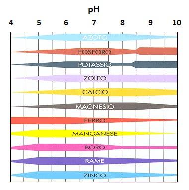 pH del terreno ed effetti sulla salute del prato