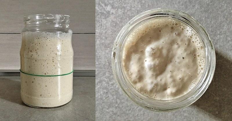 Li.Co.Li., lievito naturale in coltura liquida